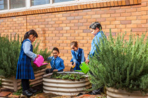 Our-Lady-of-the-Rosary-Catholic-Primary-School-Fairfield-Co-curricular-Activities-Lunchtime-Clubs